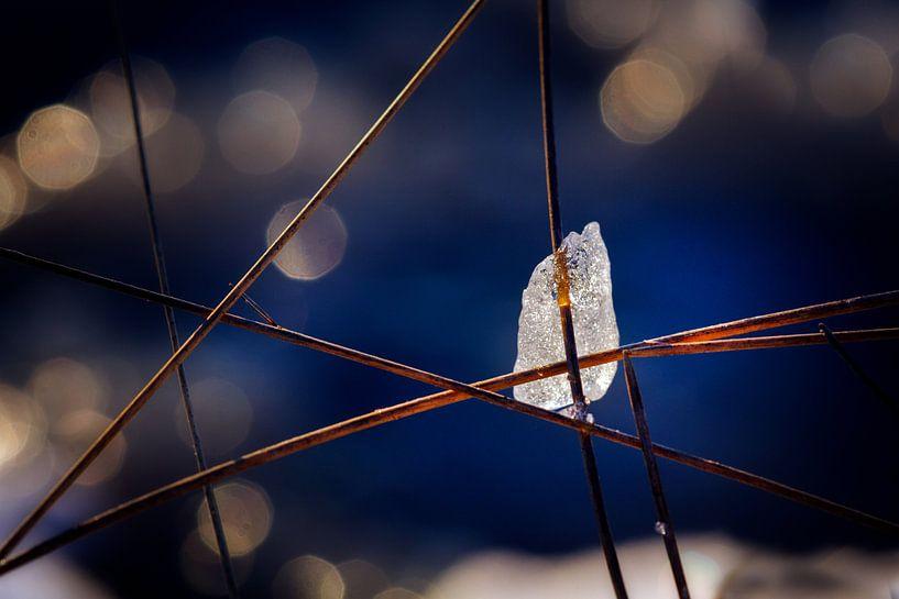 Captured in Straws van Ruud Peters
