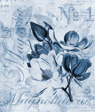 blauwe magnolia van Andrea Haase