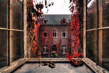 Fenster öffnen von Vivian Teuns