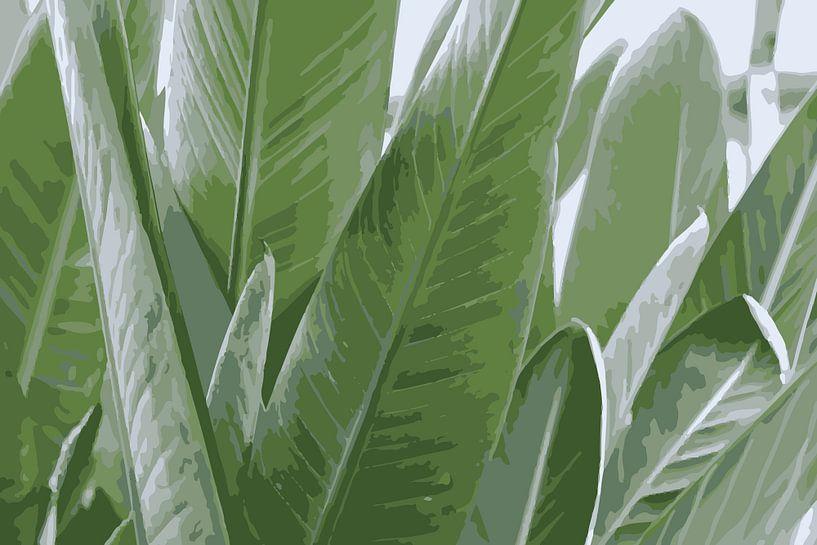 Papageienpflanze von Studio Maria
