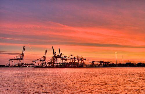 Rotterdamse haven von Thijs Schouten