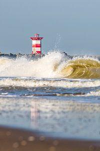 No Surfers Scheveningen van
