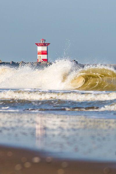 No Surfers Scheveningen van Stefan van der Kamp