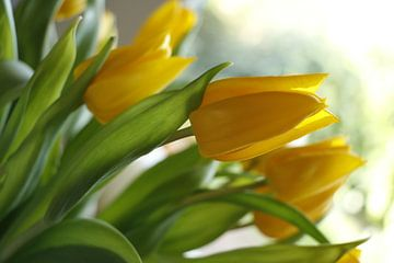Gele tulpen van Cora Unk