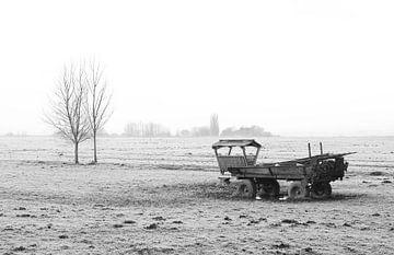 Het polderlandschap in Nederland van MS Fotografie