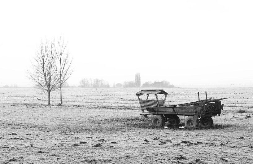 Het polderlandschap in Nederland van MS Fotografie   Marc van der Stelt