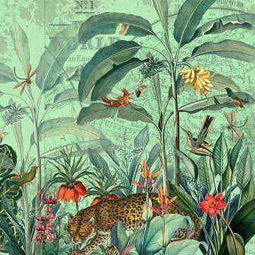 Im Reich des Dschungelleoparden von christine b-b müller