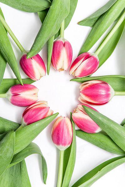 Roze tulpen in een cirkel van Ratna Bosch