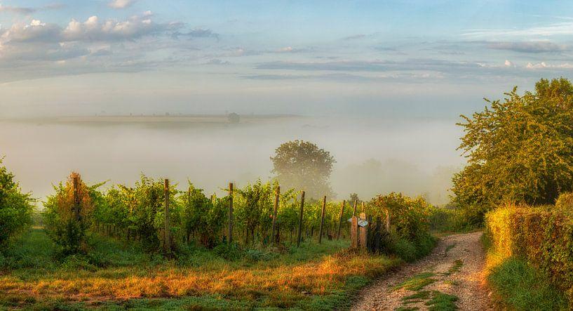 Een mistige zonsopkomst boven de heuvels in Zuid-Limburg van John Kreukniet