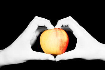 handen houden een appel vast van Anita Hermans