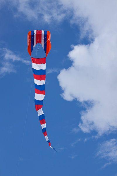 Vlieger in de lucht met vliegerevent