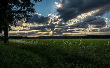 Zonsondergang boven weiland van Ellen Gerrits