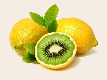 Kiwi citroen van Sarah Richter