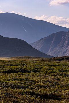 Bergstapel in Jotunheimen, Noorwegen - kleur van Wouter Loeve