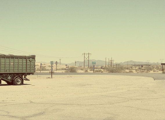 Hitte in Sonora Desert van Mr and Mrs Quirynen