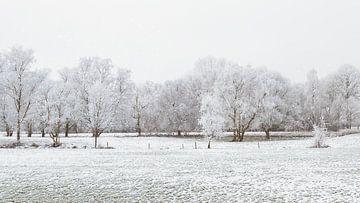 Sneeuw op de velden in Nederland van Truus Nijland