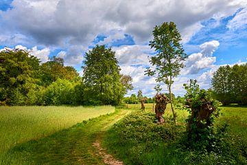 Klompenpad landgoed Oldenaller van Jenco van Zalk