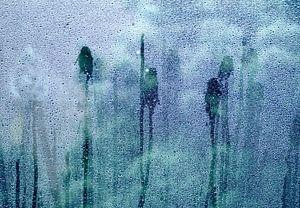 Regendruppels op een ruit