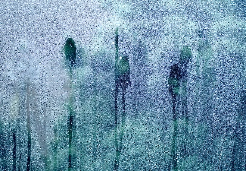 Regendruppels op een ruit van Birgitte Bergman