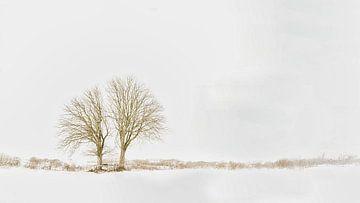 Bomen sneeuwlandschap Lentevreugd Wassenaar van Wim van Beelen