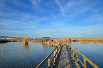 Loopbrug door het natuurpark en moerasgebied van El Hondo in Spanje van Gert Bunt
