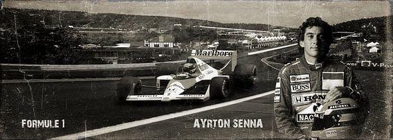 Ayrton Senna foto portret
