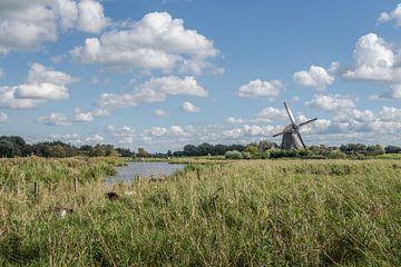 Twiske molen van Johan Vet