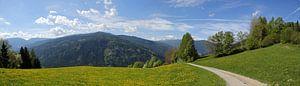 Alpenpanorama van