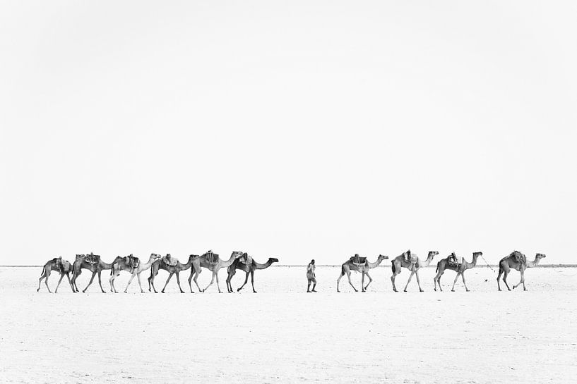 Kamelenkaravaan over een zoutvlakte | Ethiopië van Photolovers reisfotografie