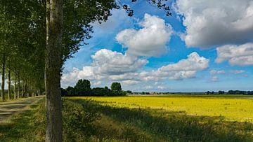 Oude weg tussen Biervliet en Driewegen met uitzicht op de Helena polder von Anne Hana