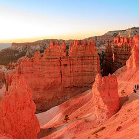 Bryce Canyon Panorama bij zonsopkomst van Gerben Tiemens