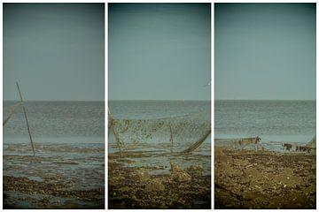 lauwersmeer triptychon 14 von anne droogsma