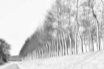 Winterbaumdeich von Ellen Driesse