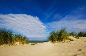 An den Strand! von Wim van der Geest