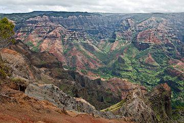 Waimea Canyon - Kauaʻi, Hawaii von t.ART