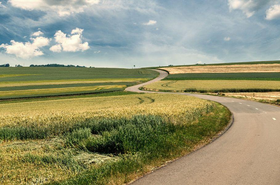 Winding Road van Arjen Roos