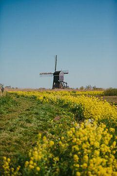 Nederlands Trots. De Molen van Sander Monster