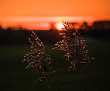 Sonnenuntergang von Alette Jager