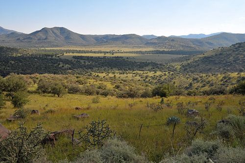 Davis Mountains van Paul van Baardwijk