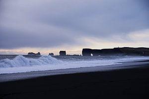 Strand von Island von Leon Eikenaar