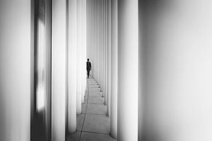 Dissapear van Christophe Staelens