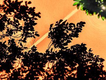 Orange en haut ! sur Pieter van Roijen