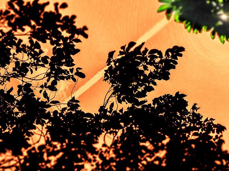 Oranje boven! van Pieter van Roijen