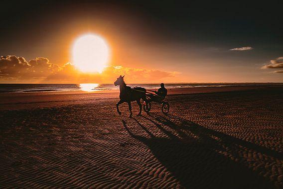 Jockey op het strand II van Rob van der Teen