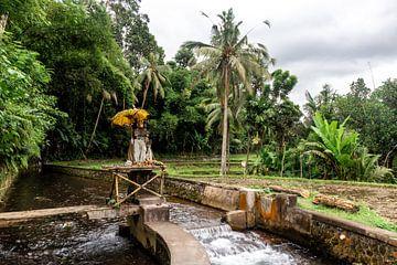 Altaar met paraplu in Bali van Mickéle Godderis