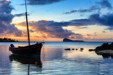 Mauritius van