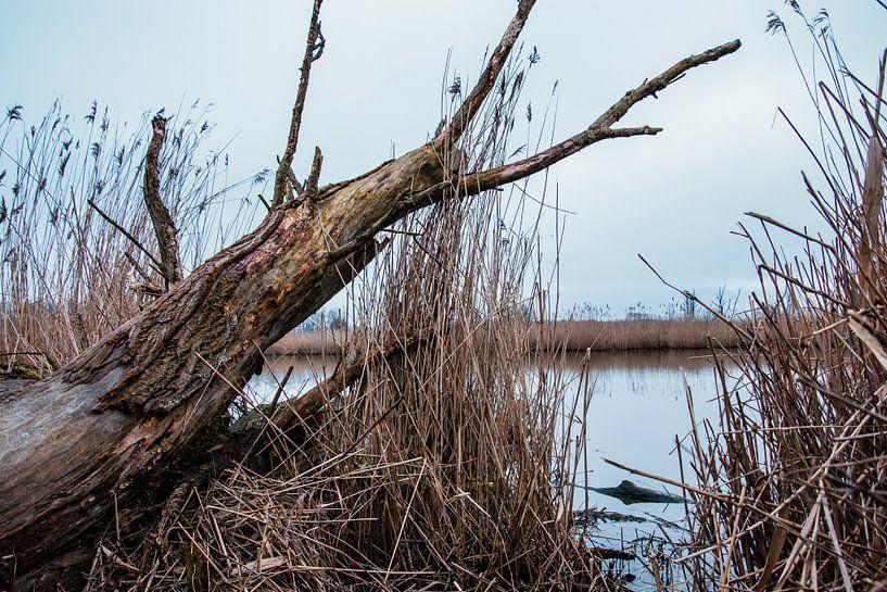 Nederland waterland van Annieke Slob