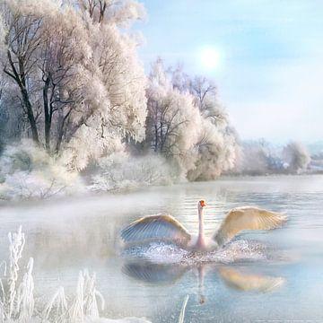 Winterochtend van Uwe Frischmuth