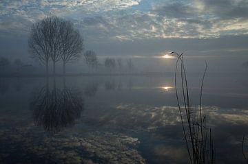 Reflexion von Bäumen und Wolken im Fluss im Winter. von Bart van Dam
