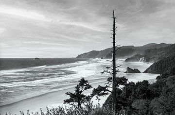 Pacific Beach in Oregon van Gerwin Schadl